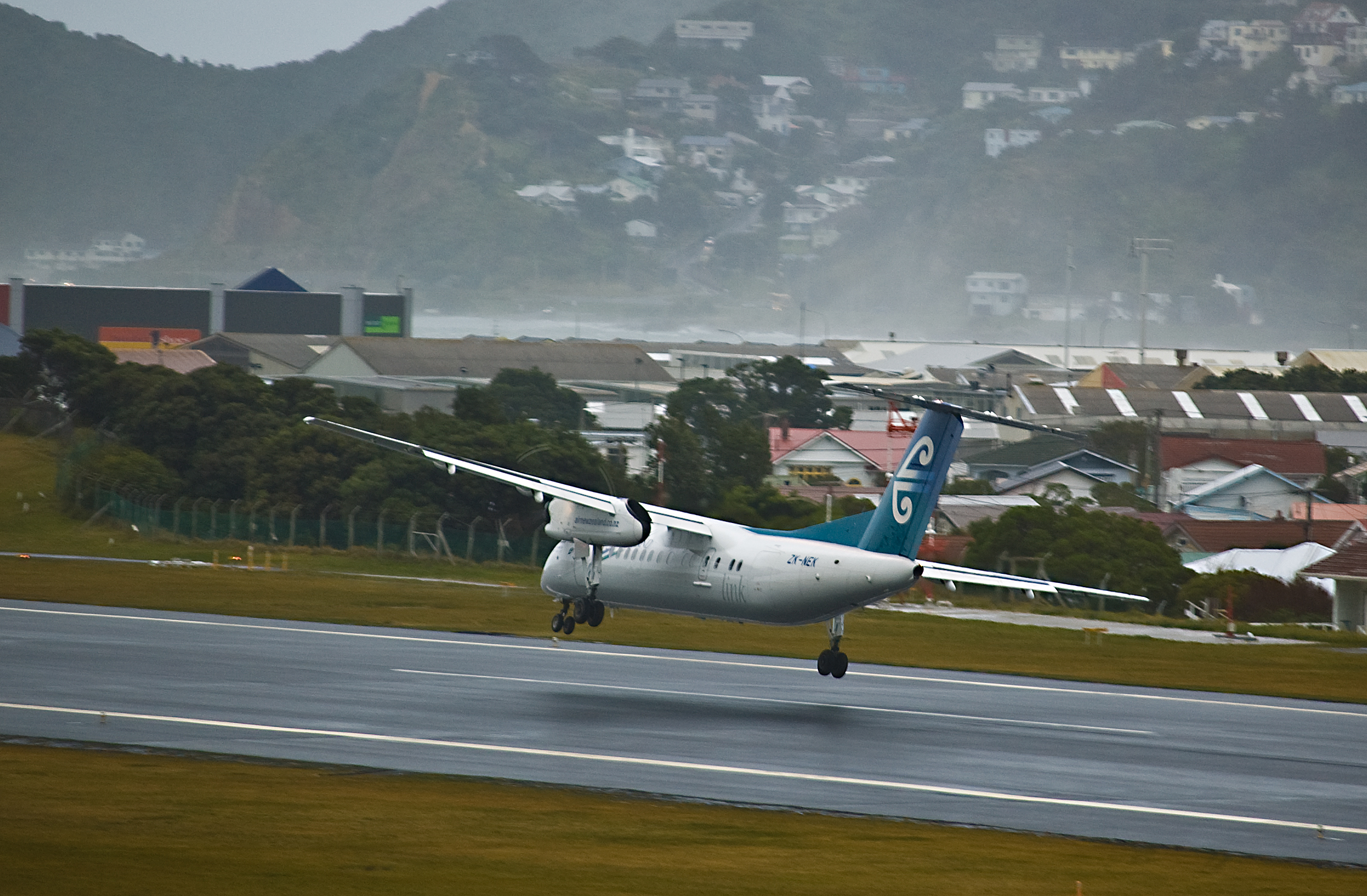 speed dating nelson nz airport