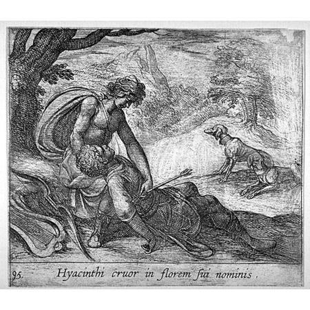Apollo e Giacinto - 1606 - Tempesta, Antonio (1555-1630) - Hyacinthi cruor in florem sui nominis - Anversa 1606