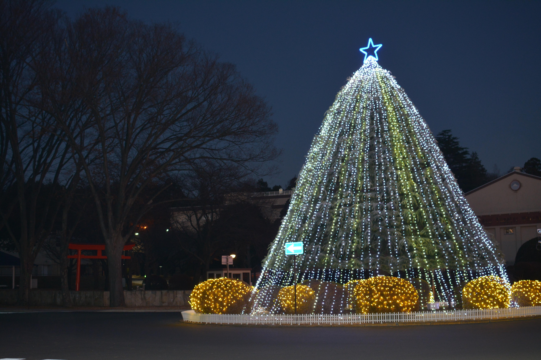 131230 file:camp zama christmas tree 131230-a-fe574-100