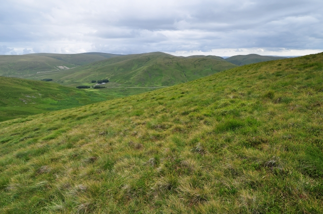 File:Comb Hill, typical terrain - geograph.org.uk - 1425730.jpg - Wikimedia  Commons