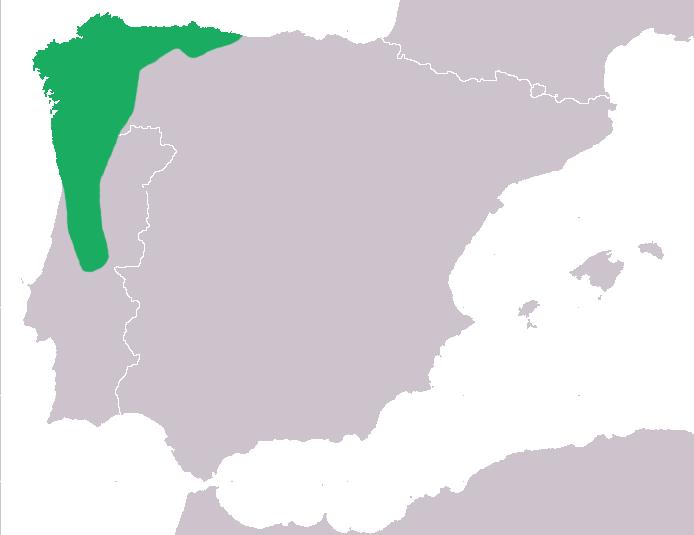 File:Distribuicao-geografica-chioglossa-lusitanica.png