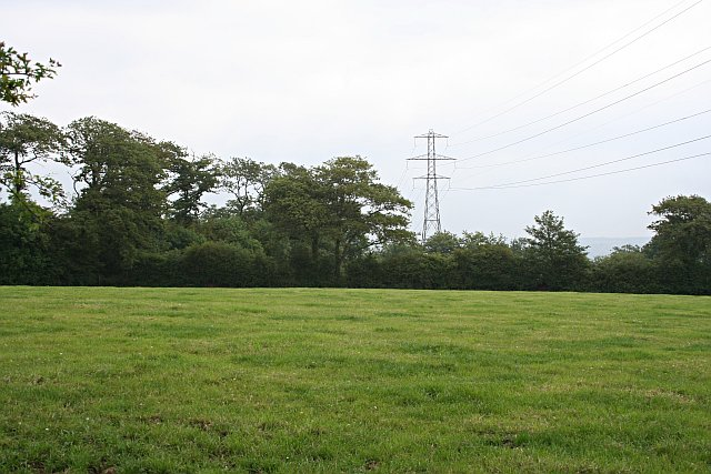 fields and grass - photo #28
