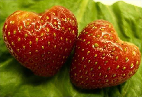 Súbor:Heart-shaped strawberries.jpg