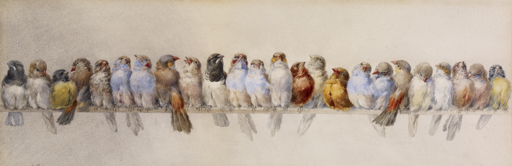 File:Hector Giacomelli - A Perch of Birds - Walters 37963.jpg ...