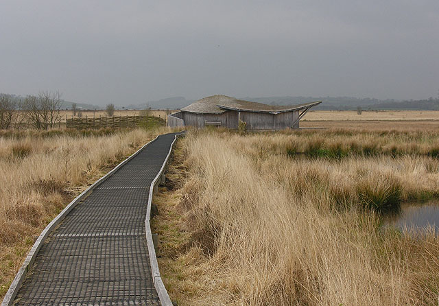 Hide on the Cors Caron - geograph.org.uk - 1254649