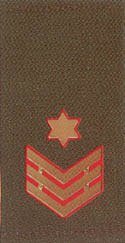 IDF Rank Chief Warrant Officer metallic obsolete.jpg