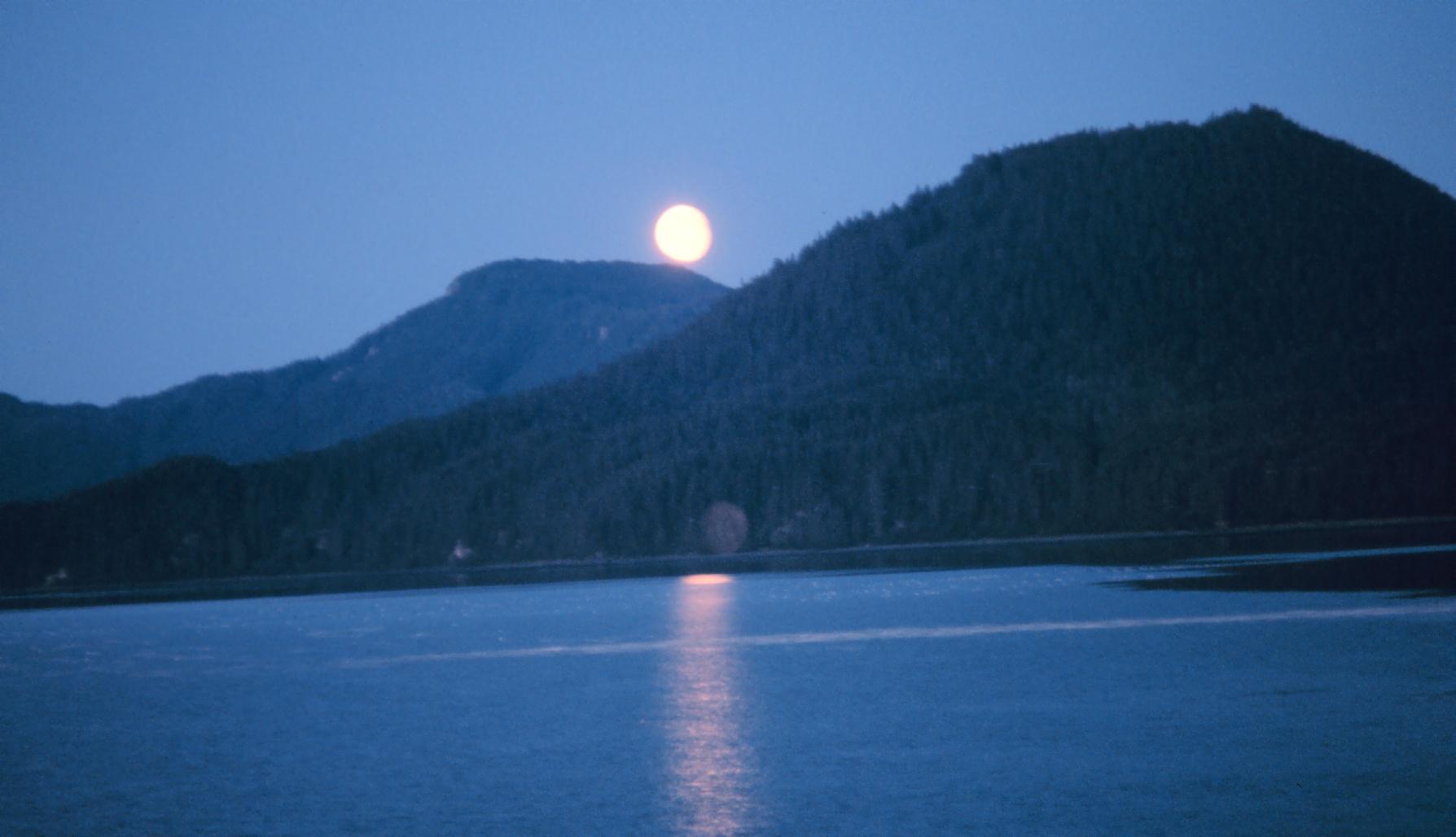 Moonrise on Hobart Bay - Commander John Bortniak