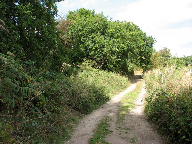 Path to Somerleyton Marina