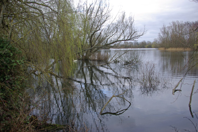 Paxton Pits Nature Reserve - geograph.org.uk - 1206569
