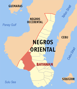 Map of Negros Oriental showing the location of Bayawan City