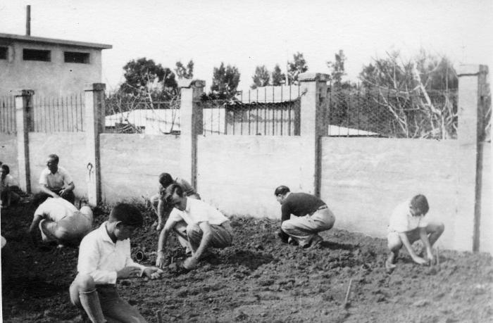PikiWiki Israel 2188 Kibutz Gan-Shmuel sk12- 203 גן-שמואל-נטיעות טו בשבט 1945-50.jpg