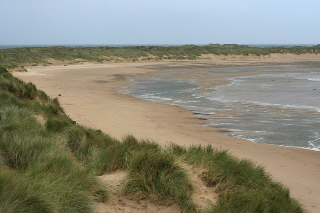 Teesmouth National Nature Reserve - geograph.org.uk - 568561