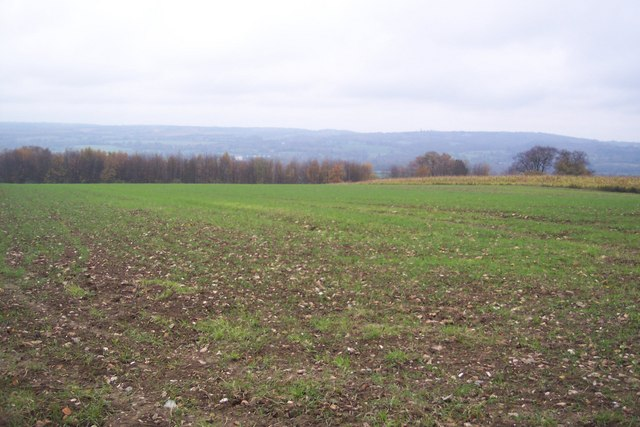 View from the North Downs Way - geograph.org.uk - 1578060