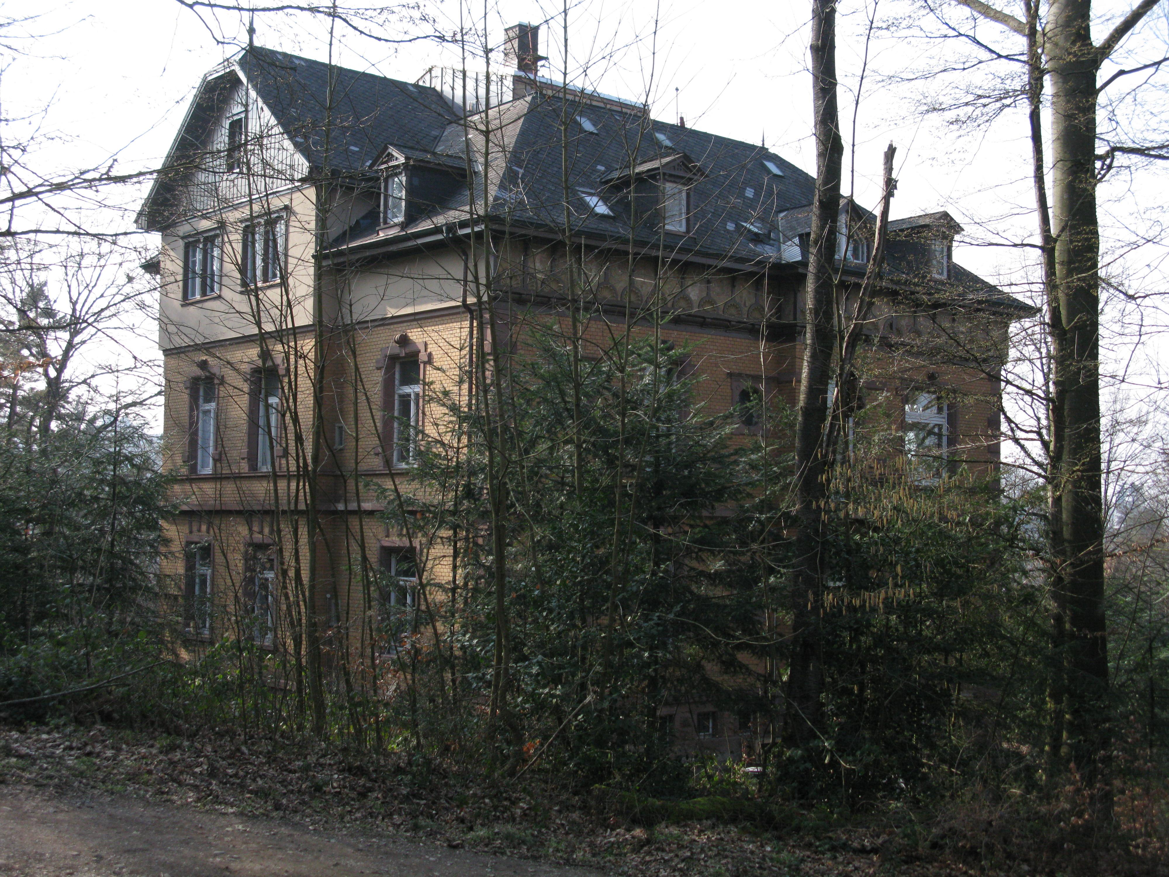 Villa Freiburg file villa mitscherlich in freiburg wiehre jpg wikimedia commons