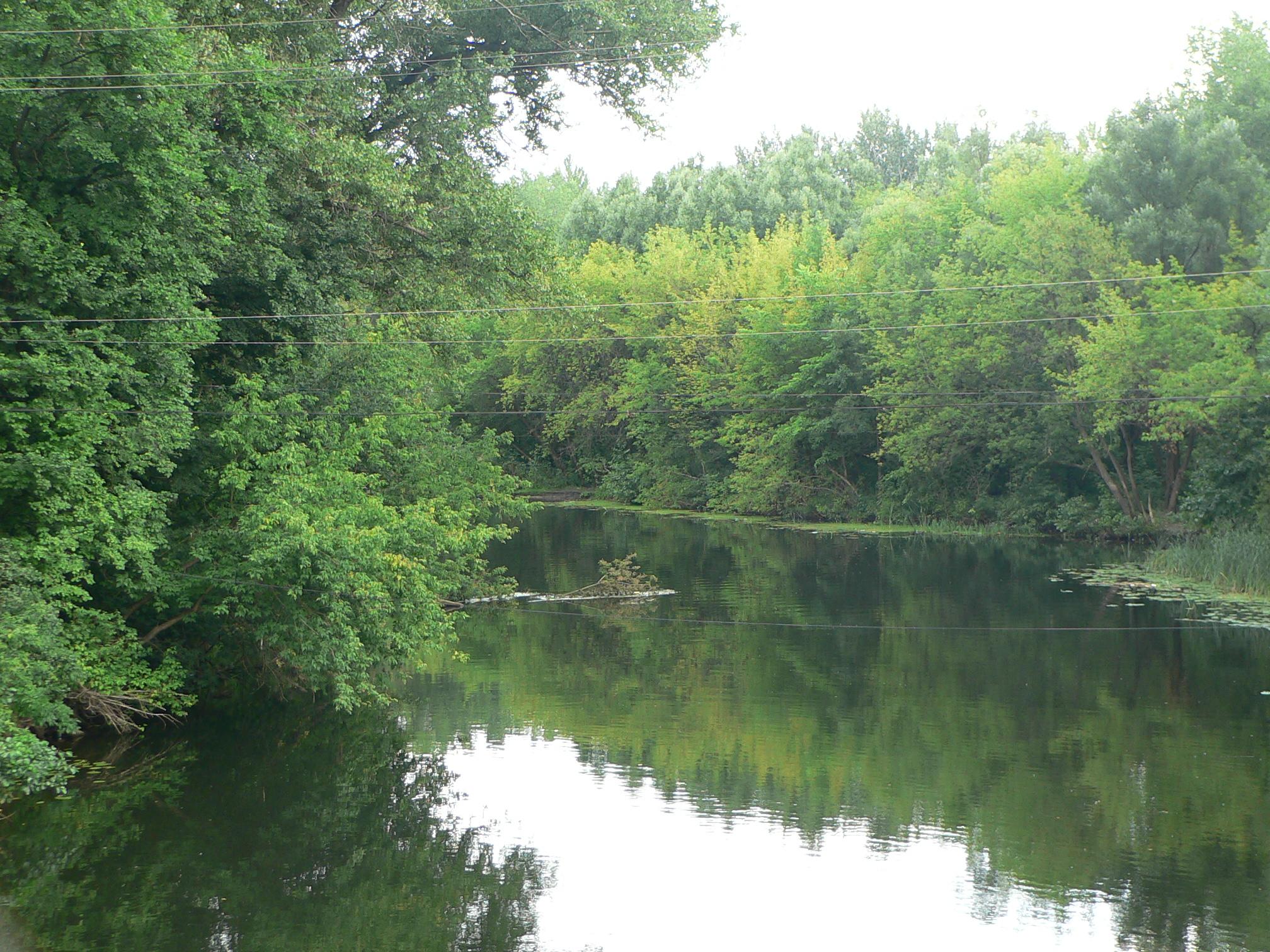 река лесной воронеж фото дачных домов чебоксарах