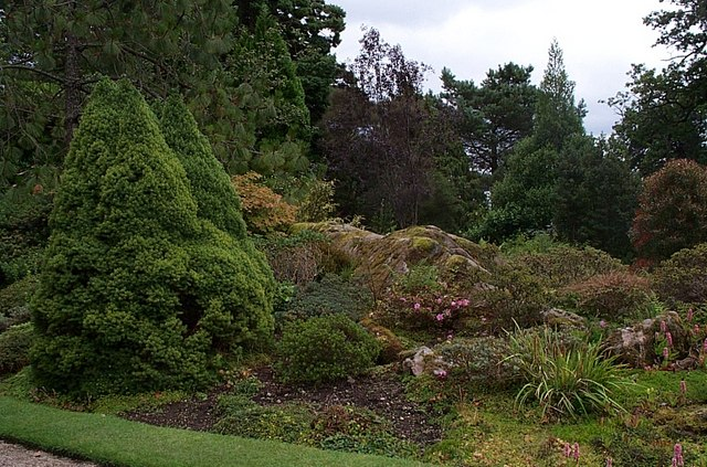 Alpine Garden Brodick Castle - geograph.org.uk - 1464885