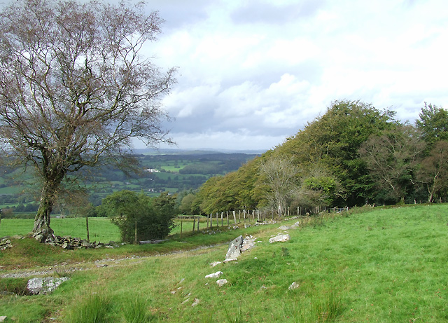 Byway and Teifi Valley Landscape, Ceredigion - geograph.org.uk - 564448