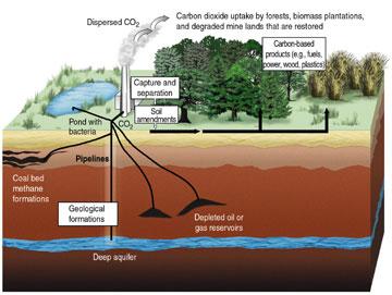 Schéma de principe de la séquestration artificielle du carbone produit par une centrale électrique au fuel, ou de sa valorisation comme engrais (mais acidifiant, et avec un effet de seuil)