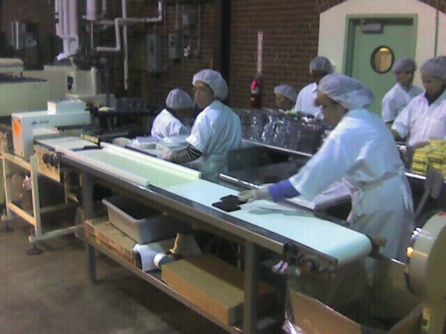 Chocolate assembly line