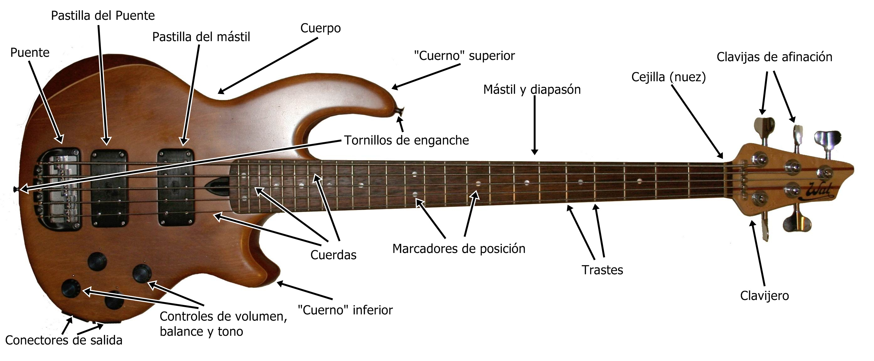 File:Electric bass anatomy.jpg - Wikimedia Commons