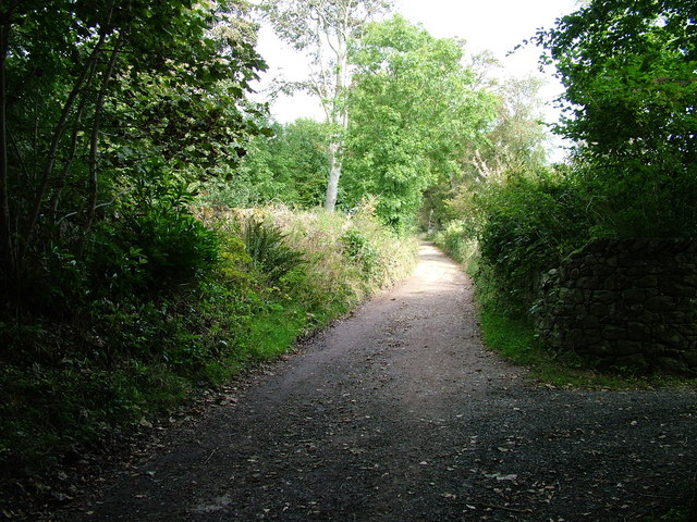 Fell lane, Muncaster Fell - geograph.org.uk - 1493886