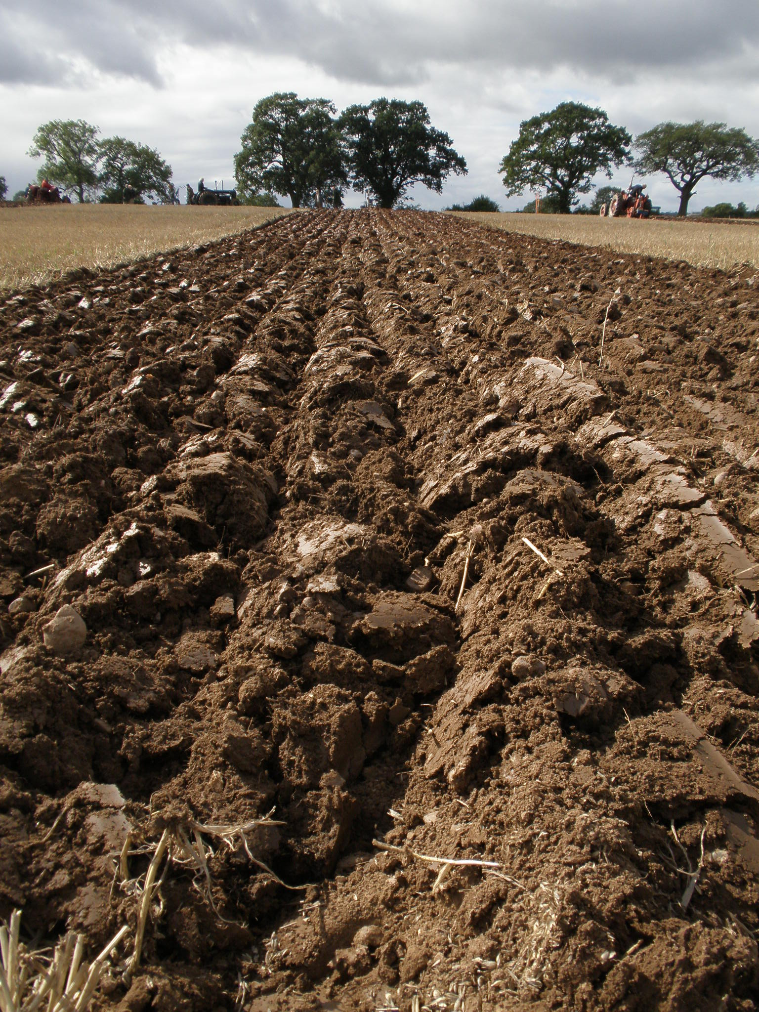 File furrows ploughed wiktionary for Rich soil definition
