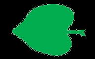 Feuille cordée ou cordiforme