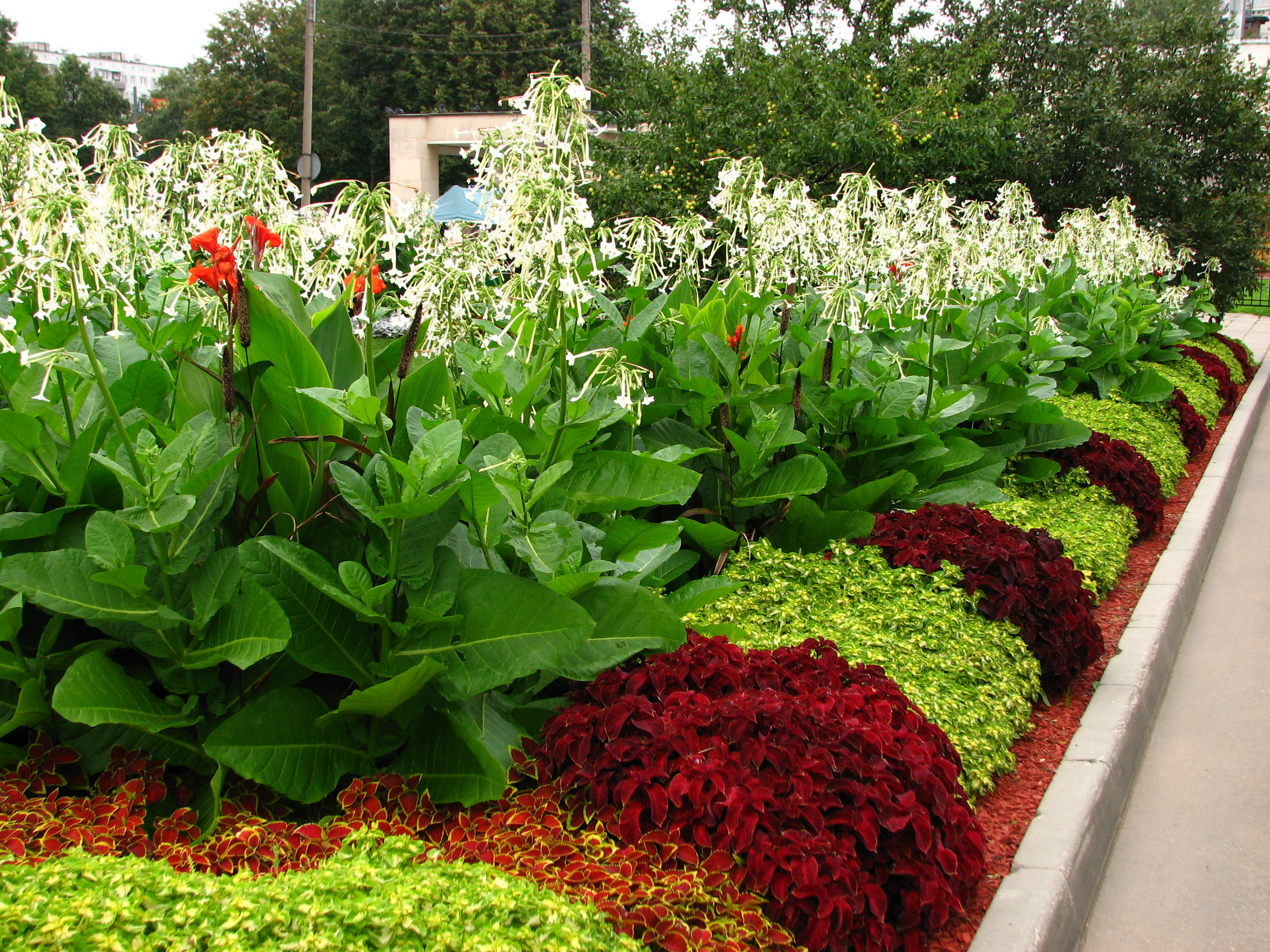 File main flowerbeds in kolomenskoye 02 jpg wikimedia commons - Flower and lawn landscaping ideas ...