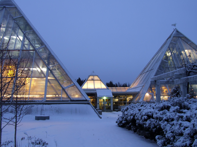 File:Oulu University Botanical Gardens 20091206b.JPG - Wikimedia Commons