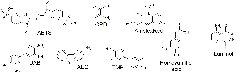 Horseradish Peroxidase (HRP)