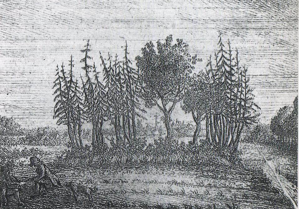 Upstalsboom, �lteste bekannte Ansicht von C.B. Meyer (1790)