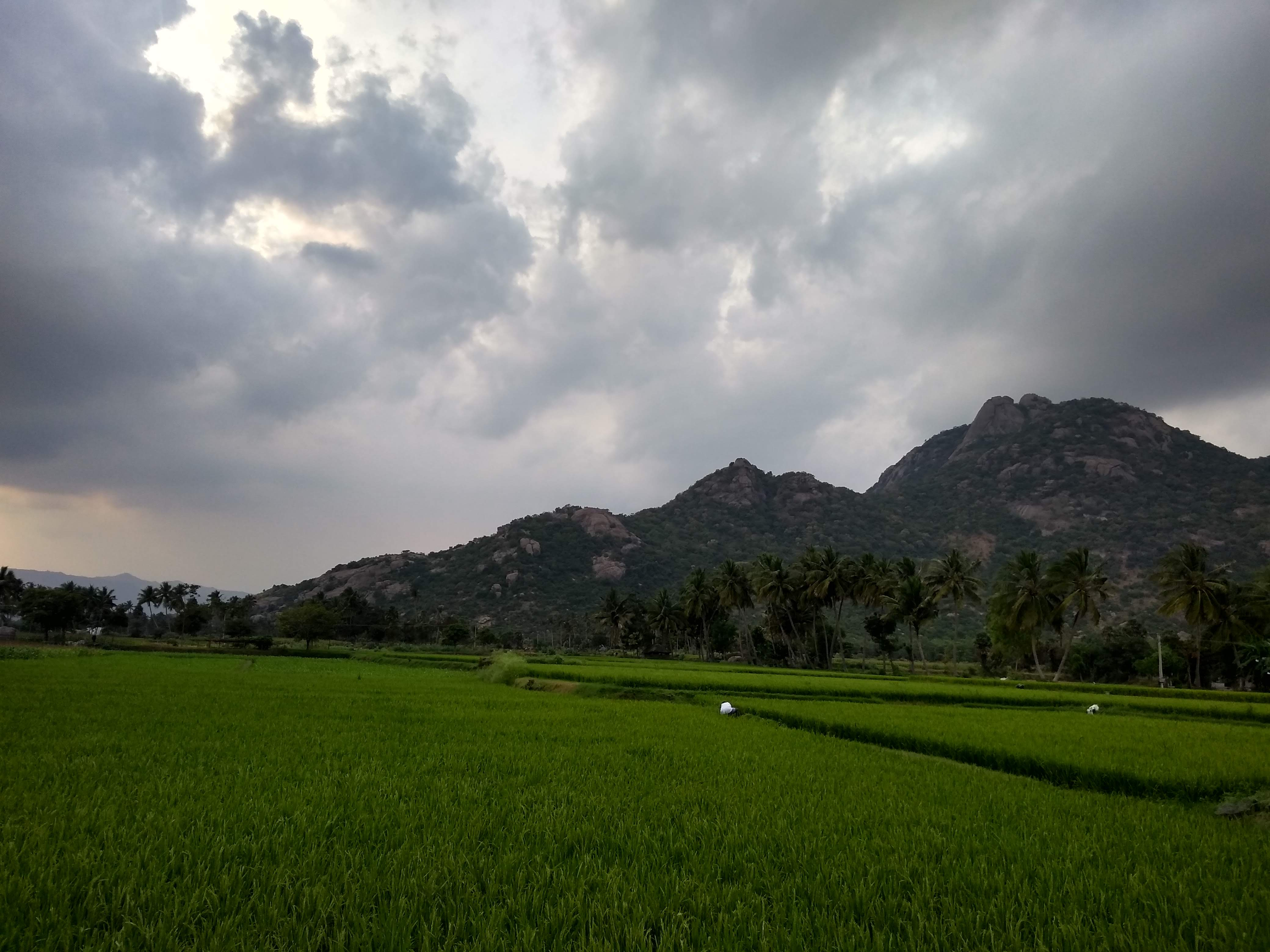 Kalrayan Hills - Wikipedia