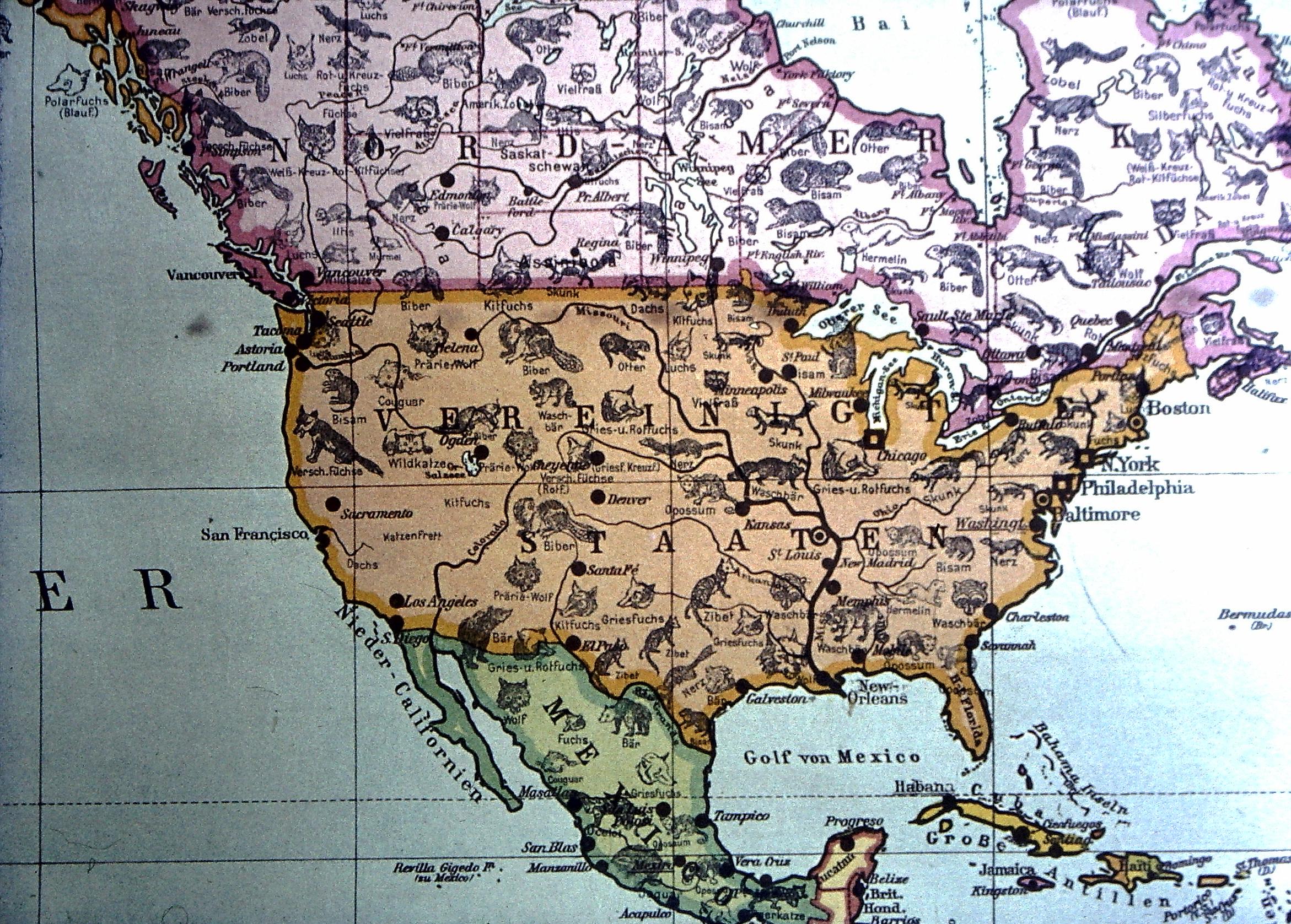File Weltkarte Der Pelztiere Nordamerika 2 Jpg Wikimedia Commons