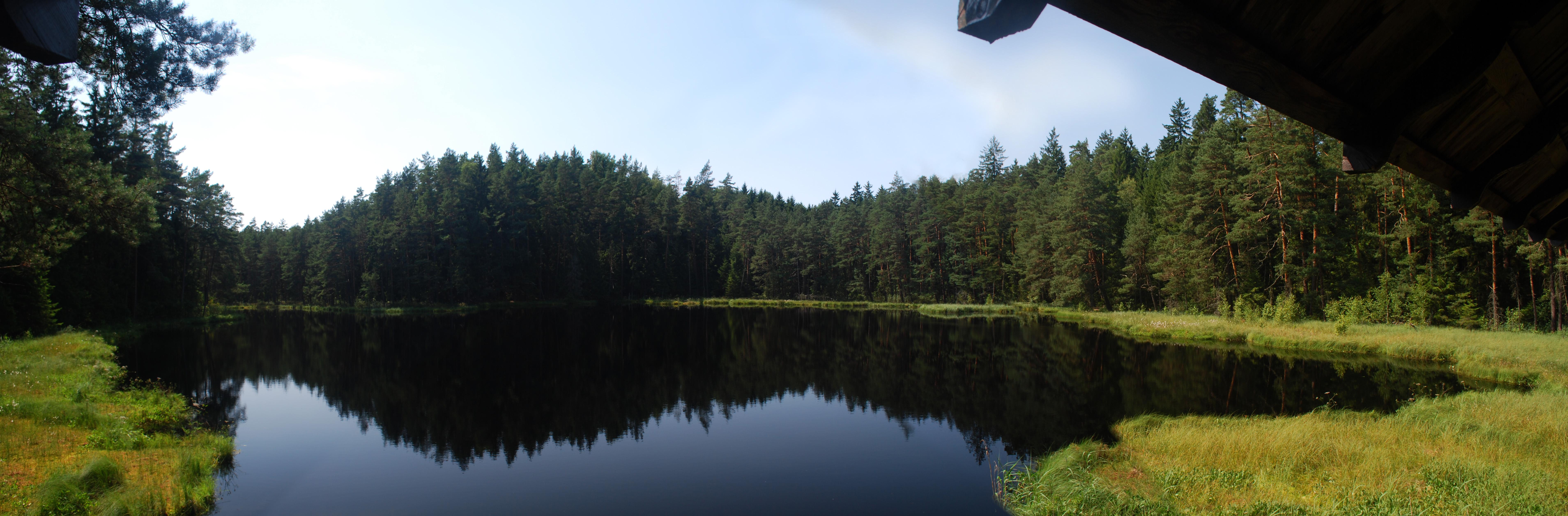 Wigierski suchary 4 panorama.jpg