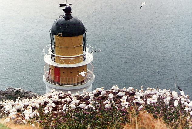 Bass Rock Lighthouse -...