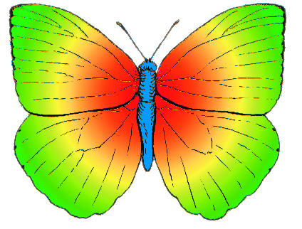 File:Butterfly rainbow colored.png - Wikipedia