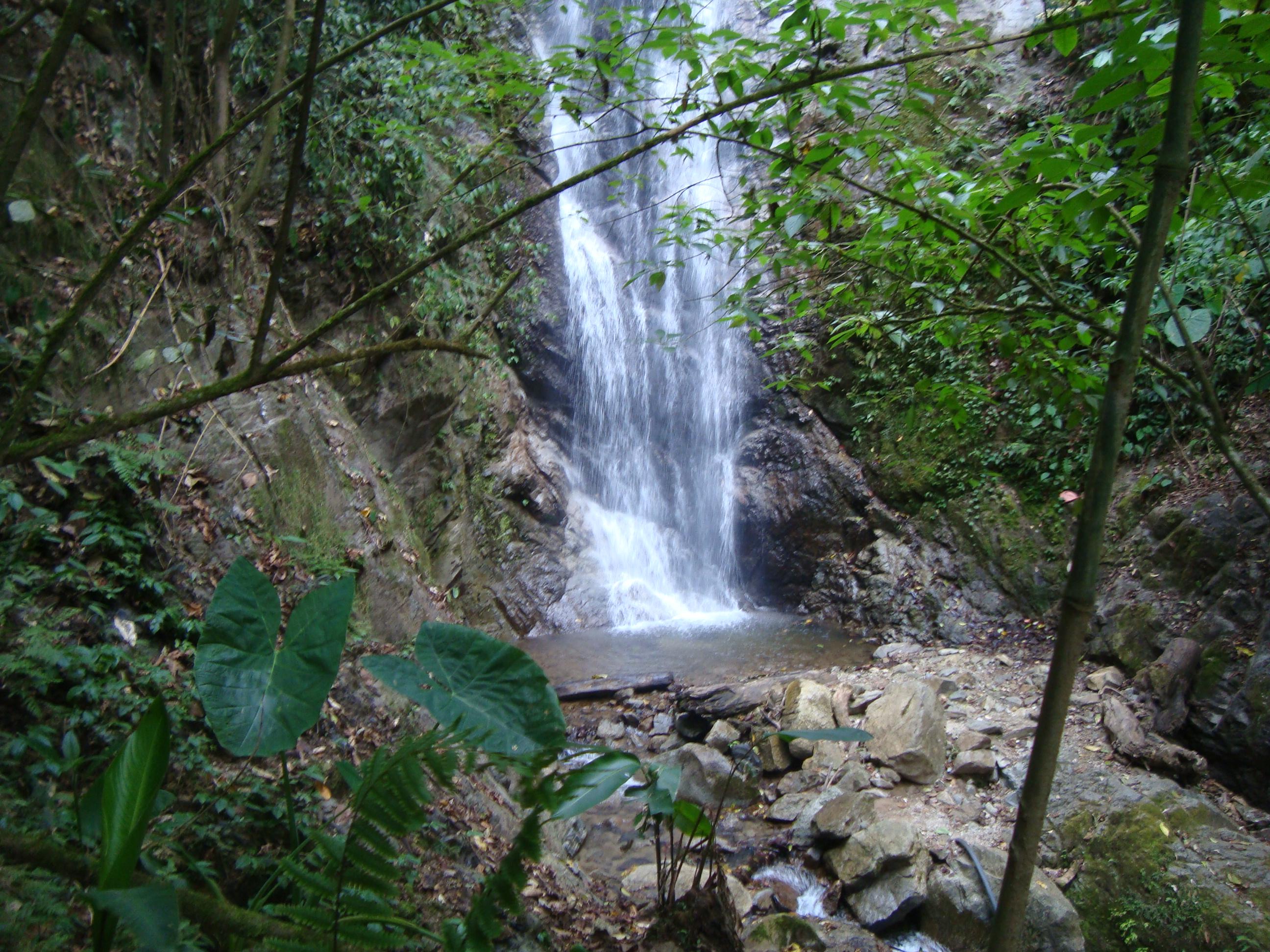 File cascada de el jardin jpg wikimedia commons for Cascadas de jardin