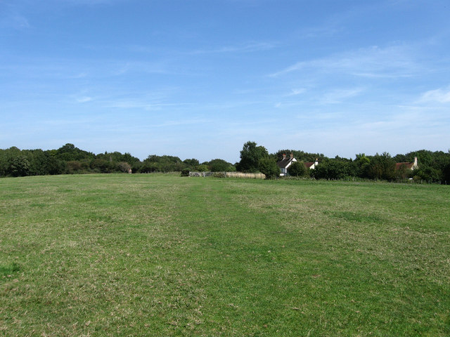 Ditchling Common - geograph.org.uk - 1450781
