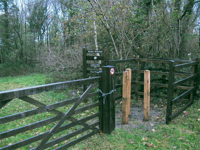 Entrance to Tregib Wood from Cwm Cib - geograph.org.uk - 1049458
