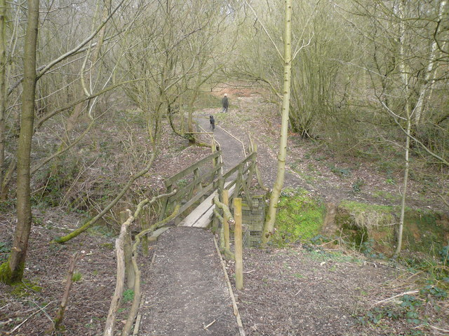 Footbridge over brook which feeds into The Great Pond of Stubbing - geograph.org.uk - 706919