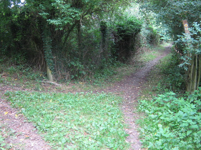 Footpath junction on Darenth Valley Path - geograph.org.uk - 1448034