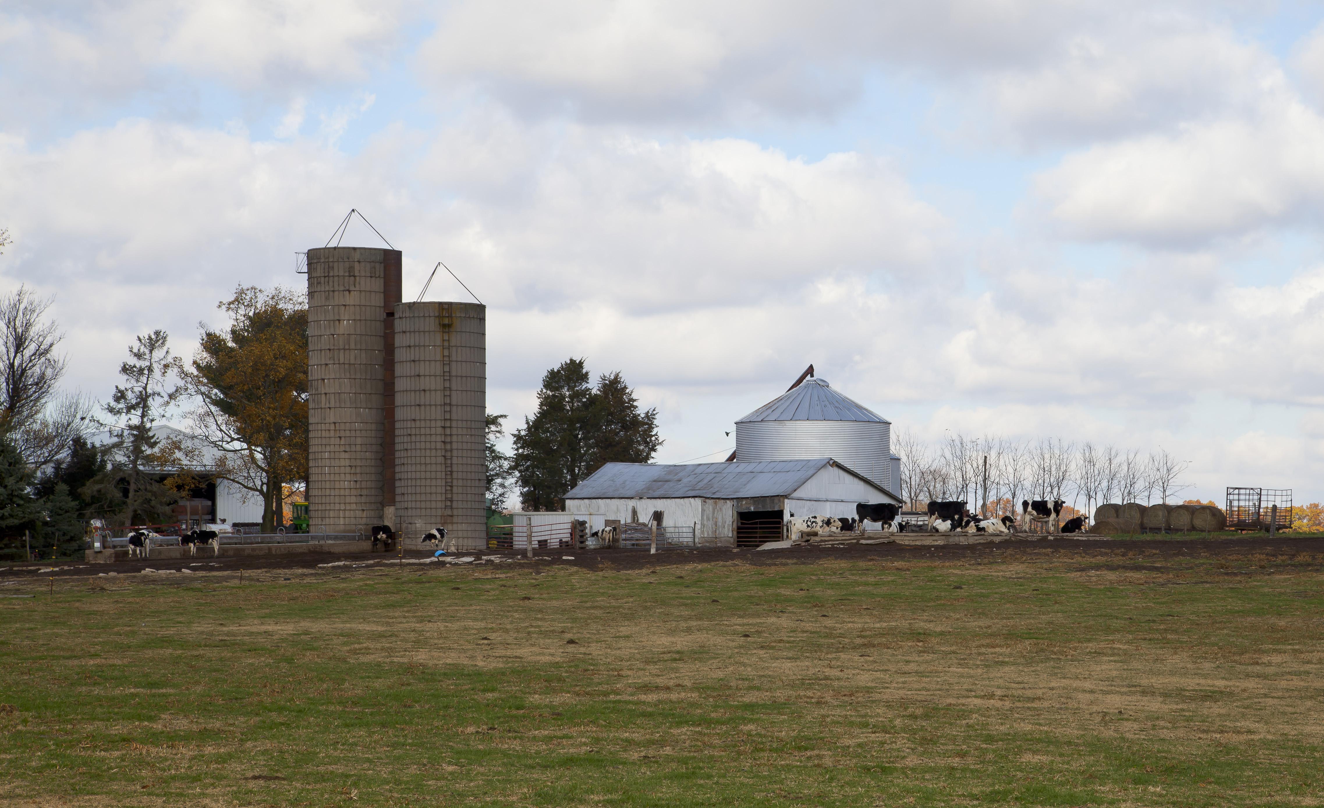 Indiana jasper county tefft - Farm In Walker