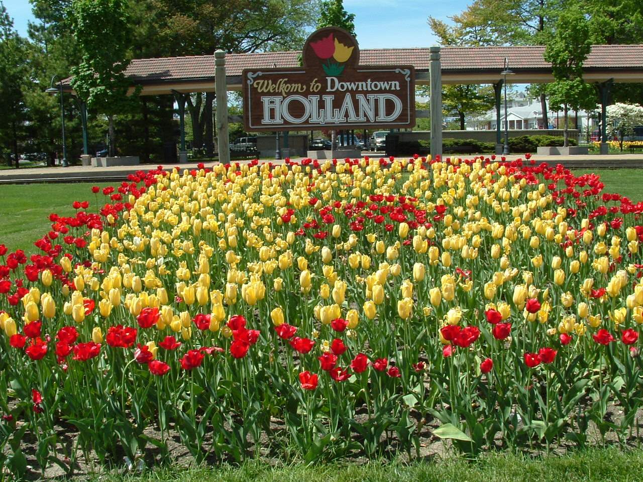 Tulip Festival - Holland, Michigan