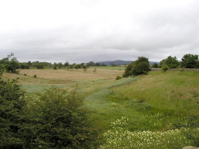 Kelds Well Syke - next to the Leeds and Liverpool Canal - geograph.org.uk - 137450