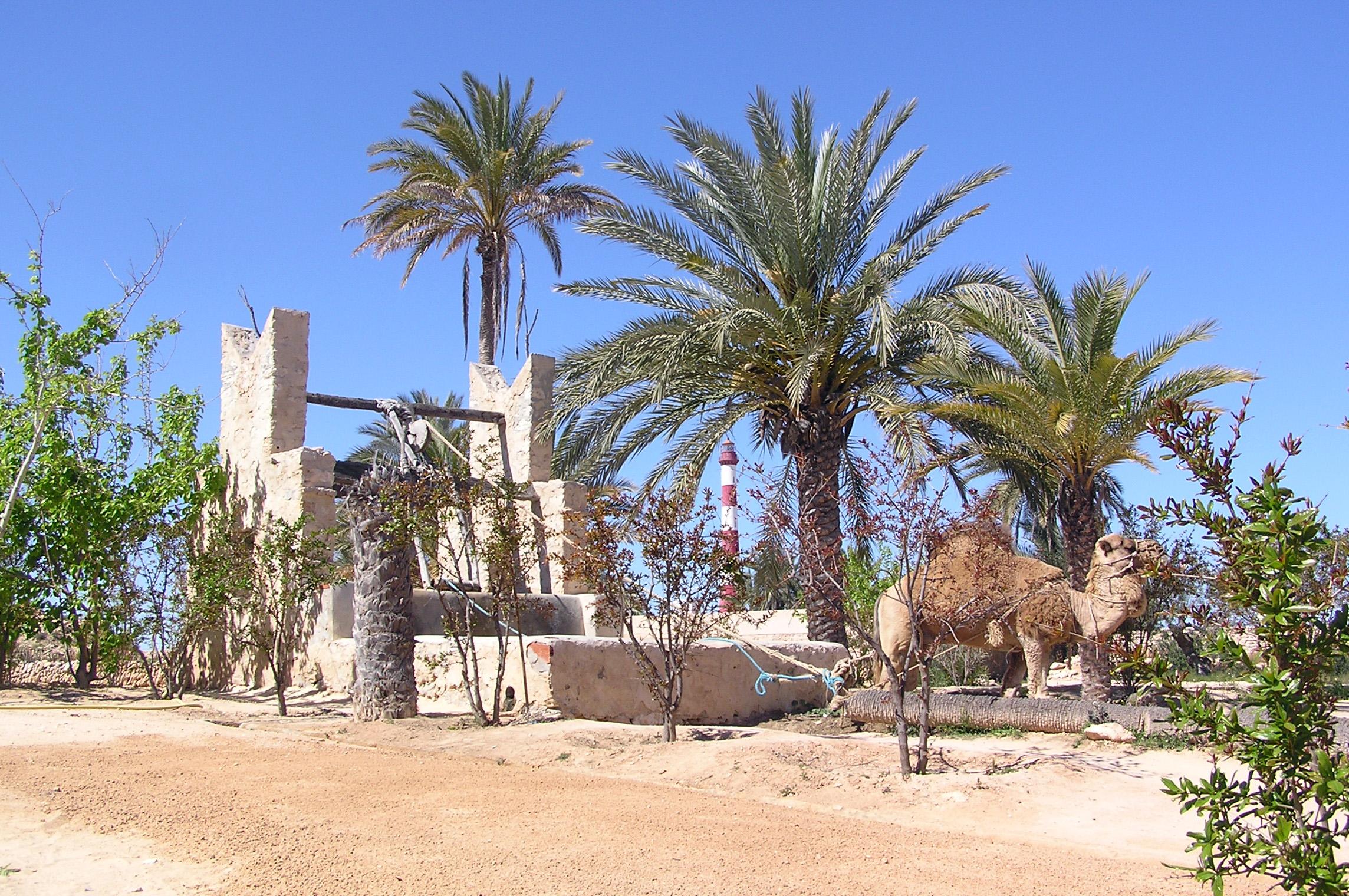 Old well in Djerba