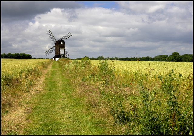Pitstone Windmill - geograph.org.uk - 1480791