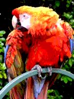 RGB 6levels paletroprovaĵimage.png