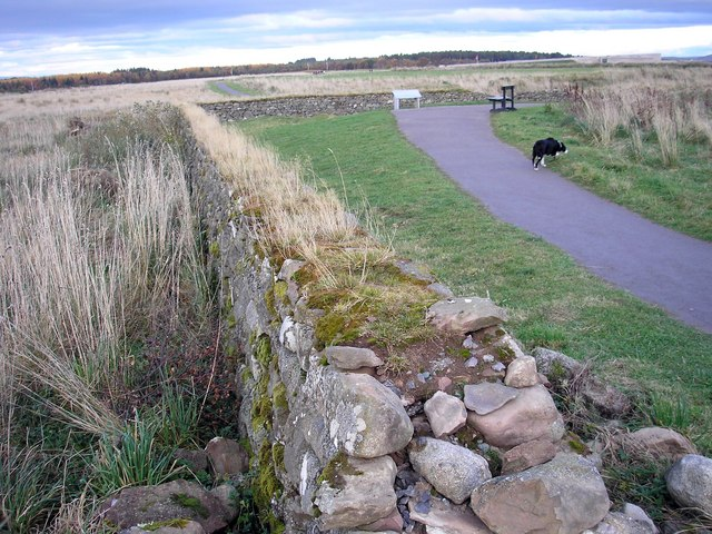 File:Remains of the Stockade Walls, Culloden Battlefield - geograph.org.uk - 1038856.jpg