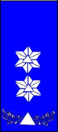 File:Sivilforsvaret-Distinksjon-Sivilforsvarsinspektør2 ...