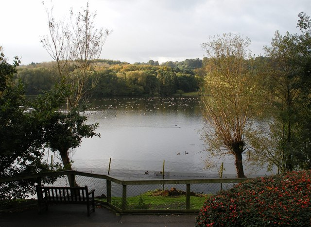 The fishpond, Harewood House - geograph.org.uk - 1016890
